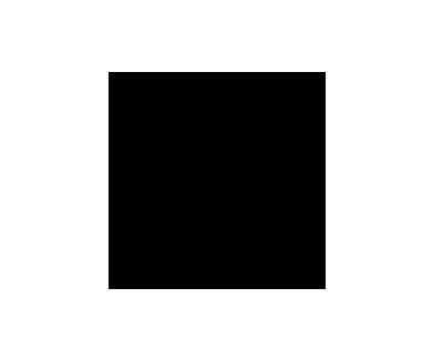 Client - BMW - logo black