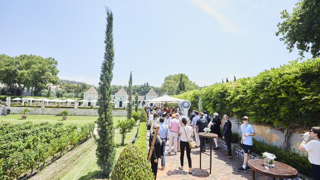 Portugese vineyard - outdoor summer venue